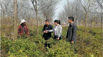 【今日头条】送物送技到地头——江苏花卉产业技术体系