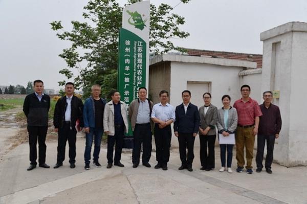 2020年江甦現代(dai)農業產業技術體系建設項目順利通過績效考評